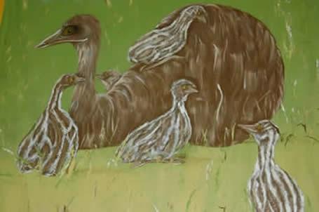 Emus and the Aboriginal